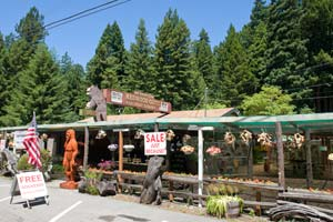 Redwood Gift Shop