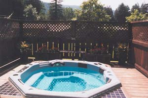 Hot Tub in the Redwoods